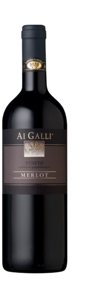 Typical Merlot Veneto Ai Galli