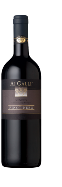 Typical Pinot Nero Veneto Ai Galli